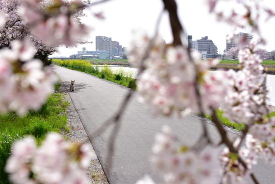 club_photo_001